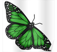 Butterfly Scarf - green Poster