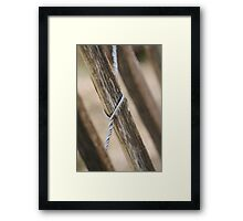 wooden fence Framed Print