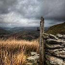 Sticks Pass by David Robinson