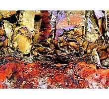 Rockface, Oregon Photographic Print