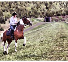 Horse & Rider 2 by SNAPPYDAVE