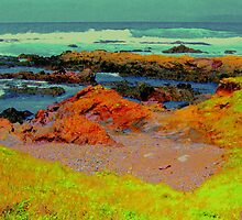 Mendocino Coast # 14, California (A Nod To Gauguin) by Ascender Photography