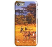 The Wet Season Approaches iPhone Case/Skin