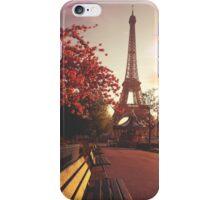 Evening in Paris iPhone Case/Skin