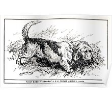 All about dogs a book for doggy people Charles Henry Lane 1900 0119 Rough Basset_jpg Poster