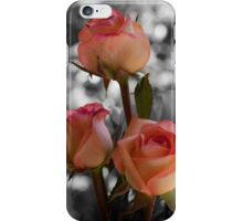 Apricot Roses with Black and White bacground iPhone Case/Skin