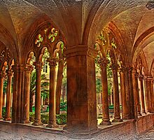 Cloisters of Dominican Friary. Dubrovnik. by vadim19