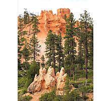 View from a Bryce Canyon Trail  Photographic Print