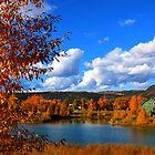 Lakeside by velkovski