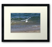 Beach Landing Framed Print