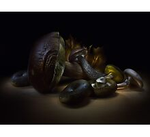 Gifts of september - lightpainted still life Photographic Print