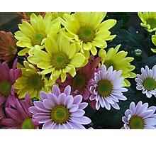 Floral Bouquet (6459) Photographic Print