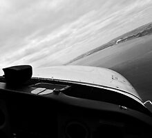 Shark Patrol Black and white by wedgephoto