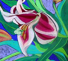 Pink Lily by marlene veronique holdsworth