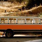 Transport.......A La Mode......Cyprus Style by DoreenPhillips