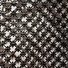 Iron Grate by phil decocco