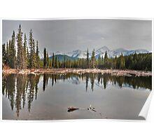 Beaver lake Poster