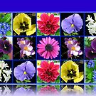 Voices of Spring - Floral Collage in Blue Reflection Frame by BlueMoonRose