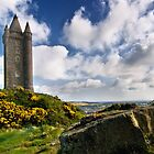 Scrabo Tower by Alan McMorris