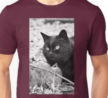 """""""Head-Bent"""" Pussy Rue (hidden behind a stone !), And I in birds tuned! but not in the same place for I  2 h) by Olao-Olavia / Okaio Créations  by fz 1000 2014 Unisex T-Shirt"""