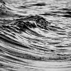 Waves by Shane Bonnell