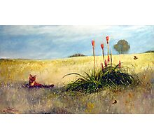 Fox and the Red Hot Pokers Photographic Print
