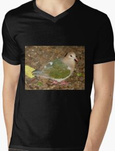 Dove, Australia Zoo, Beerwah, Queensland. Mens V-Neck T-Shirt