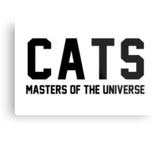 CATS - Masters of the Universe! Metal Print