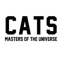 CATS - Masters of the Universe! Photographic Print