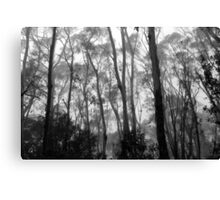 Listen To The Trees Canvas Print