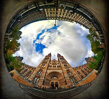 Natural History Museum, London - Wormhole by Lucy Martin