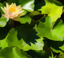 Light, Shadow and Color - Waterlily Pad Impression Sticker