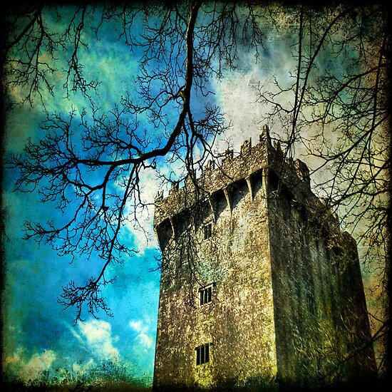 Blarney Castle, Ireland by Lucy Martin