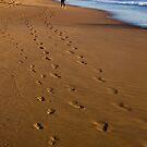 A stroll on the beach by Liza Yorkston