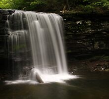 Harrison Wright Waterfalls-Ricketts Glen State Park by BigD