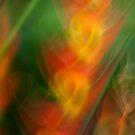 Heliconia swirls #03 by LouD