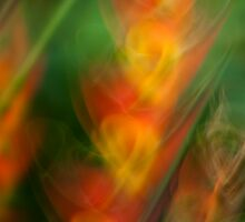 Heliconia swirls #03 by LouD