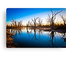 Dying to be here.......... Canvas Print