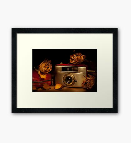 Penti II among the roses Framed Print