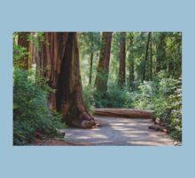 Big Basin Redwoods State Park One Piece - Short Sleeve