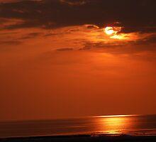 Hunny sunset by Ecohippy