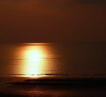 Seashine sunset by Ecohippy