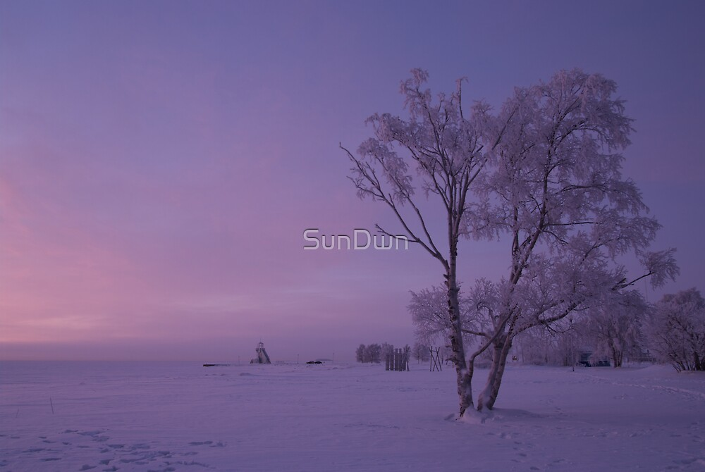 Colours Of Winter by SunDwn