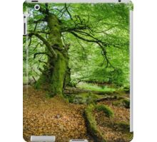 Woodland Scene, UK iPad Case/Skin