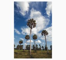Tall Trees, Circle B Nature Reserve, Florida Kids Tee