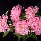 Fragrant bouquet by Ana Belaj