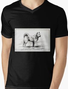 All about dogs a book for doggy people Charles Henry Lane 1900 0337 Lapland Sledge or Sled Dog_jpg Mens V-Neck T-Shirt