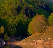 Big Valley - At water edge [Romania] by RaduCiumag