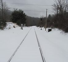 Snow on Tracks by jnifr