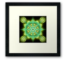 Mandala. The wheel of Dharma Framed Print